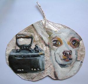 silver leaf iron bark